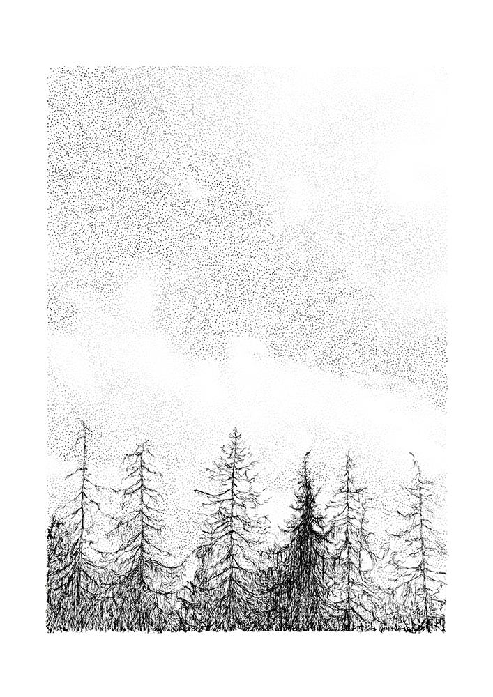 Tree Line by Maria Nilsson