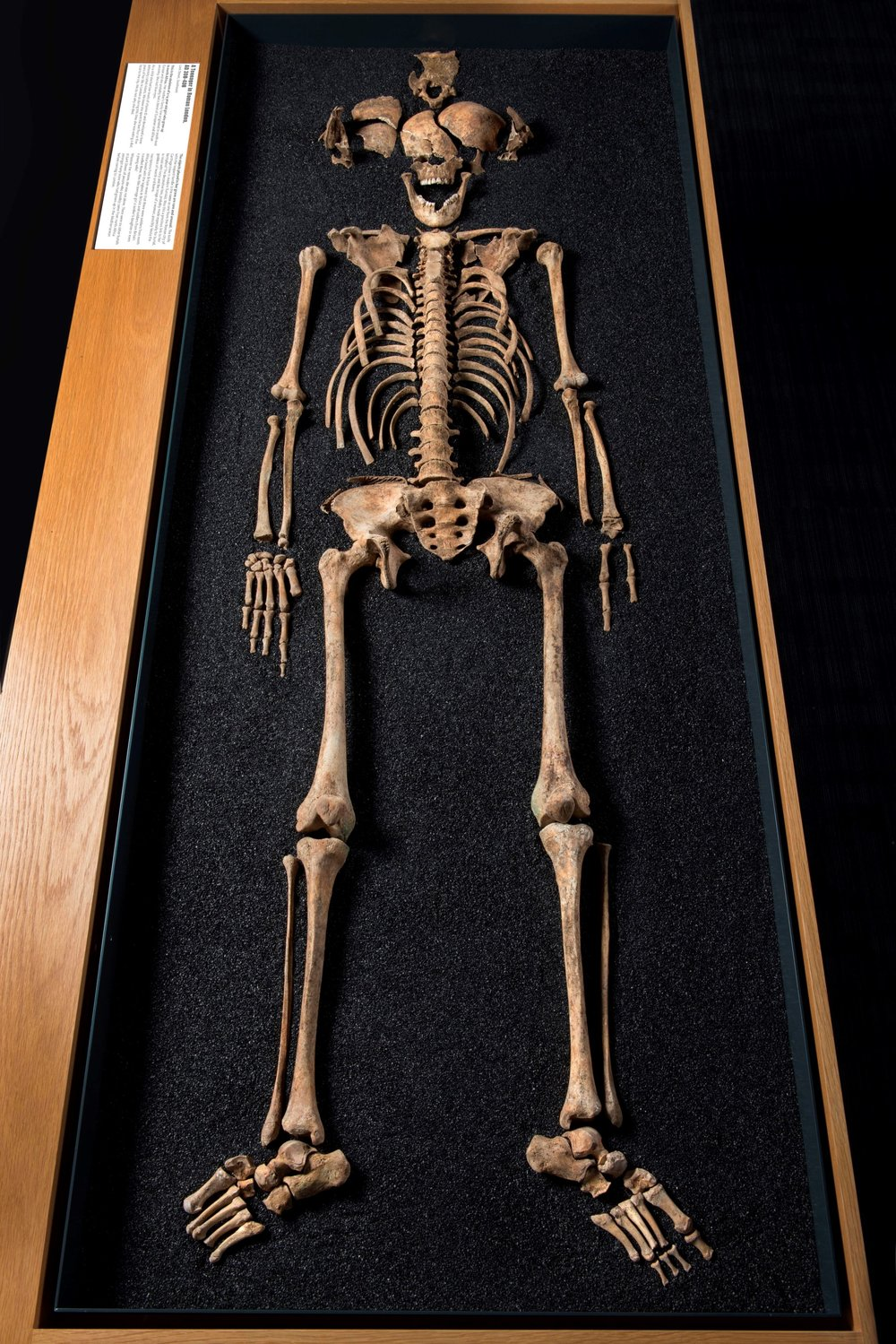 One of the skeletons unearthed in the Roman-era London cemetery.
