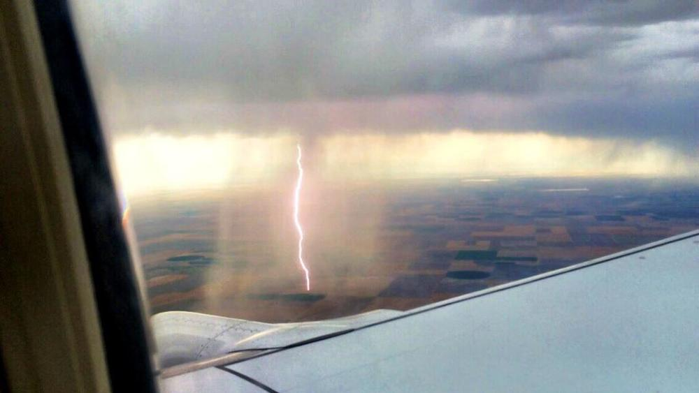 Lightning struck once. (image credit: Gina Hyams, @labelldame on Twitter)