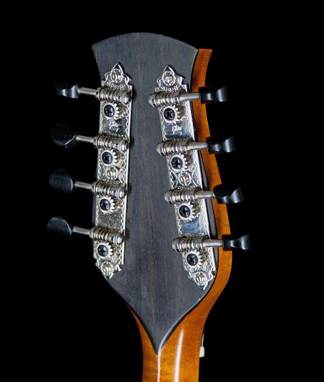 Mandolin-peghead-back-A.jpg