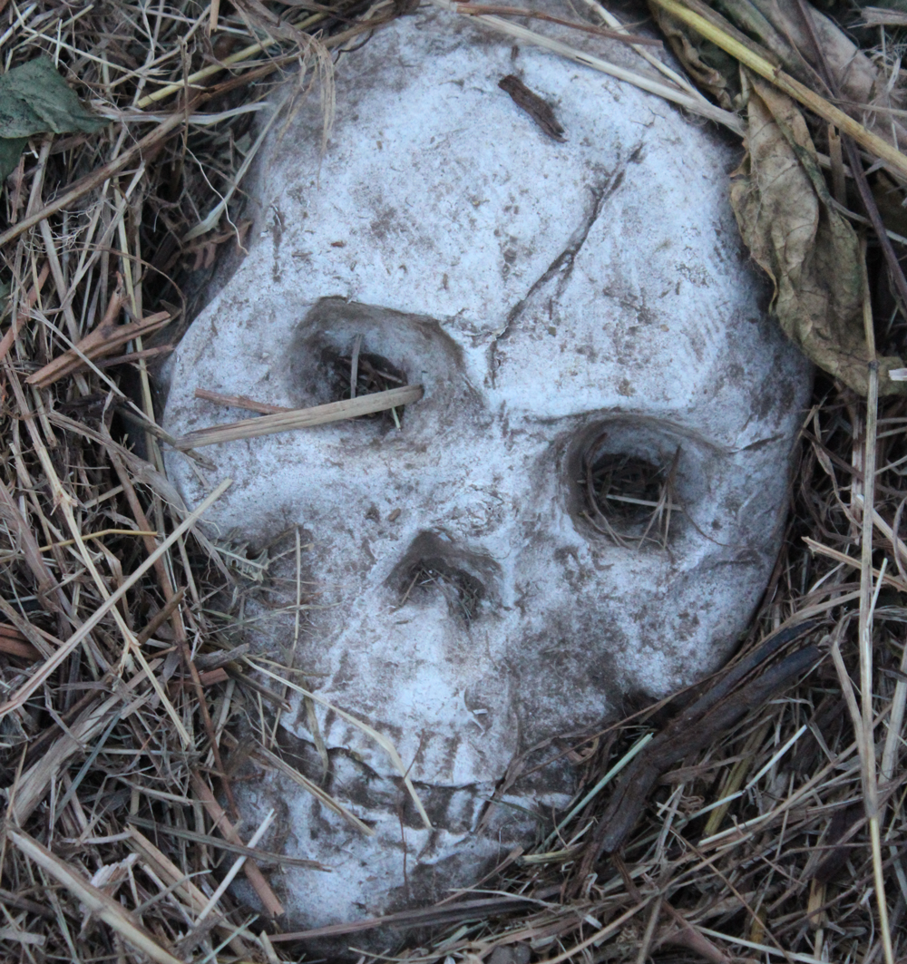 skull3.png