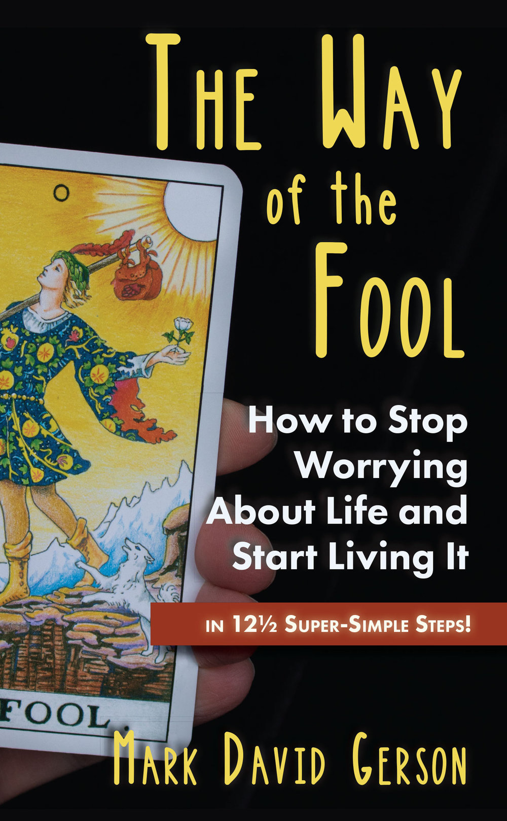 The-Way-of-the-Fool-Cover-5-26 Front copy.jpg
