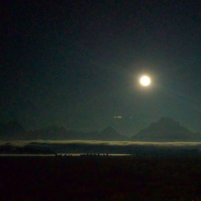Full moon setting over the Grand Tetons in the pre-dawn mist this morning. Ethereal beauty beyond a phone camera.