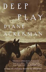 Deep Play - Recommended by Deb Schwartzkopf