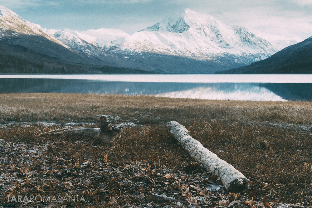 beauty in the breakdown at lake eklutna a landscape image by tara romasanta