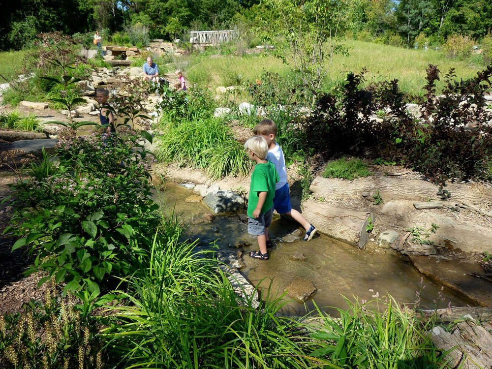 As the creek meanders through the Nature PlayScape, rocks and logs provide places for native plants to take hold and for children to perch, splash, explore. Rubber liners, piping, and concrete slabs are well hidden underneath.
