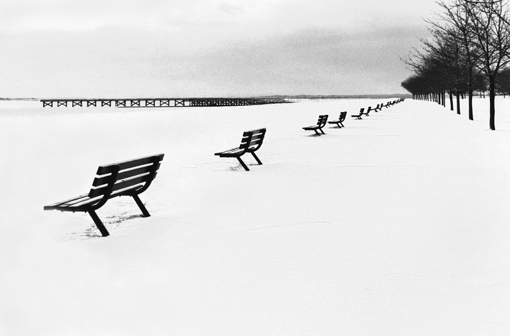 Line of Benches in the Snow