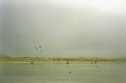 a_Saturday_afternoon_on_the_Keel_Strand.jpg