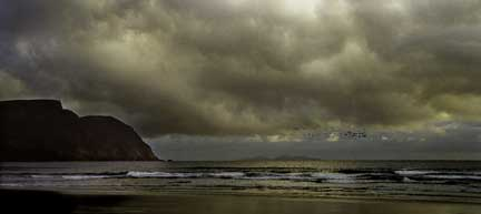 The_Evening_the_Achill_Starling_Reunited_his_Family_on_the_Keel_Strand.jpg