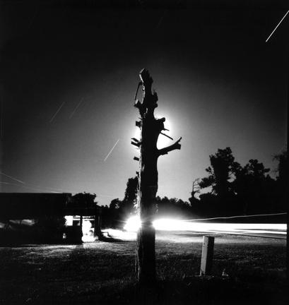 Junior Kimbrough Series: Junior's Tree