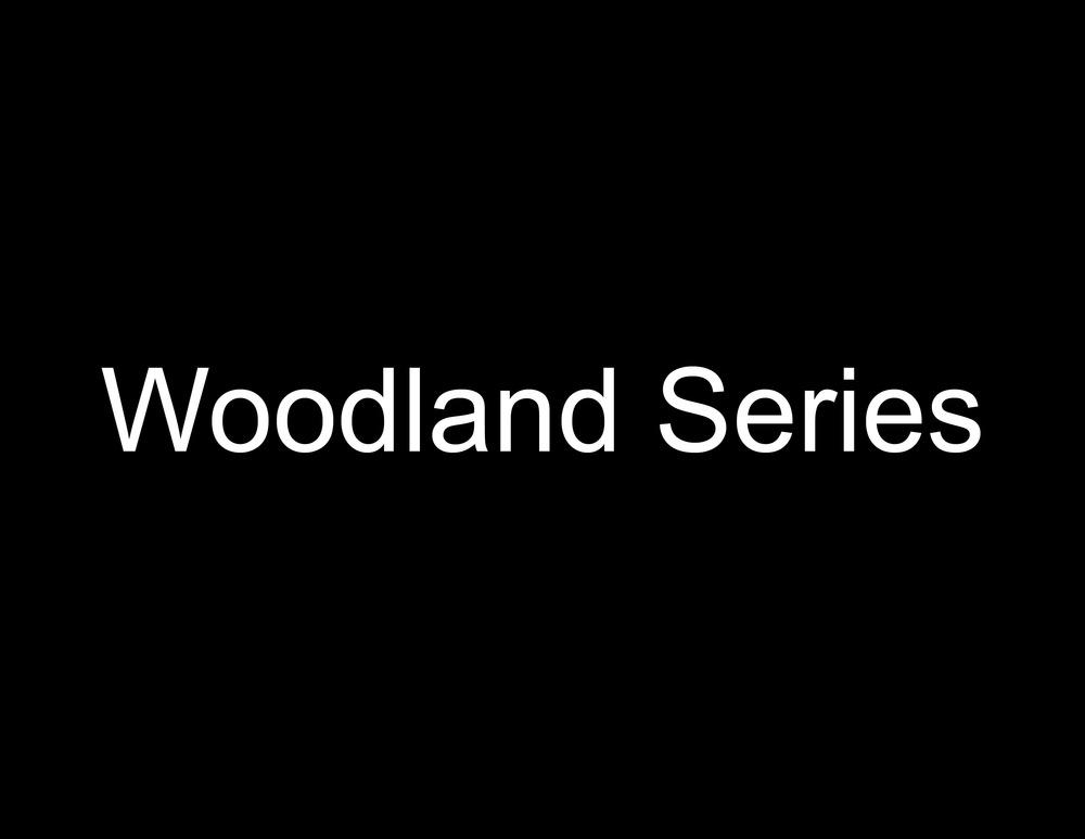 Woodland Series.jpg