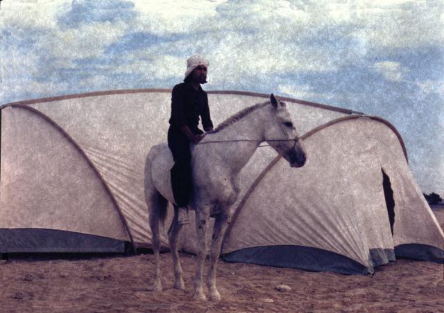 The Bill Moss Omar Tent
