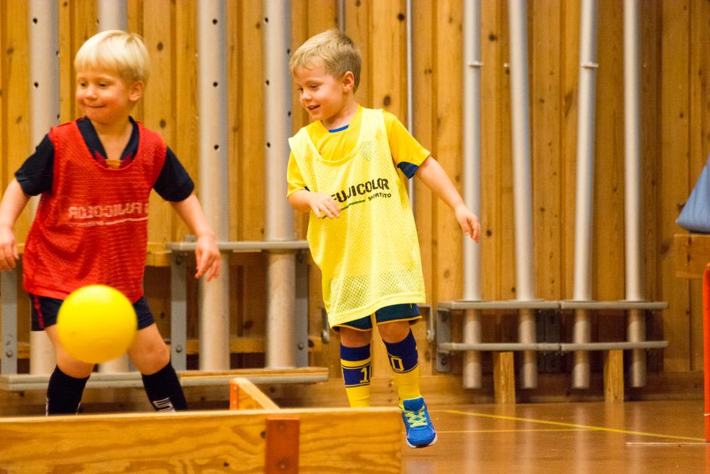 fotbollsträning_2015_01_20-07.jpg
