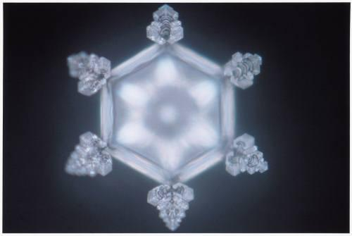 """This is one of Emoto's photographs of water crystals after showing the word, """"eternal."""" The beauty revealed in the crystals' symmetry is extraordinary. Photo courtesy of www.masaru-emoto.net."""
