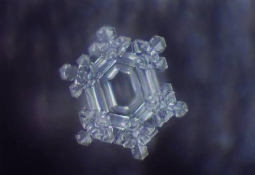 When we choose our words mindfully using conscious language, we can transform ourselves and others into beautiful shapes like this water crystal reacting to the word, 'wisdom.' Photo courtesy of www.masaru-emoto.net