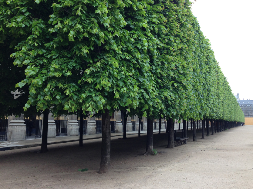 Jardins Du Palais Royal, Paris