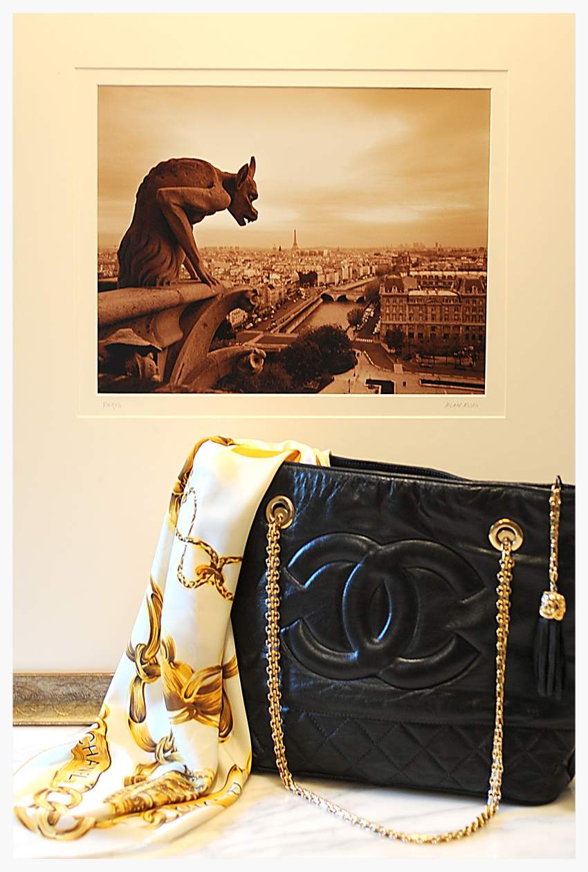 Timeless Chanel + Paris landscape guarded by a Chimera: Paris Landscape photo by  Alan Klug
