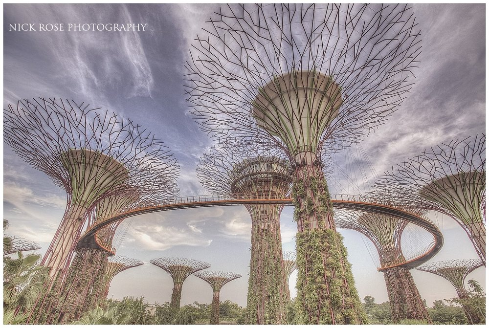 View of the Gardens by the Bay at Marina Bay in Singapore during a pre wedding shoot