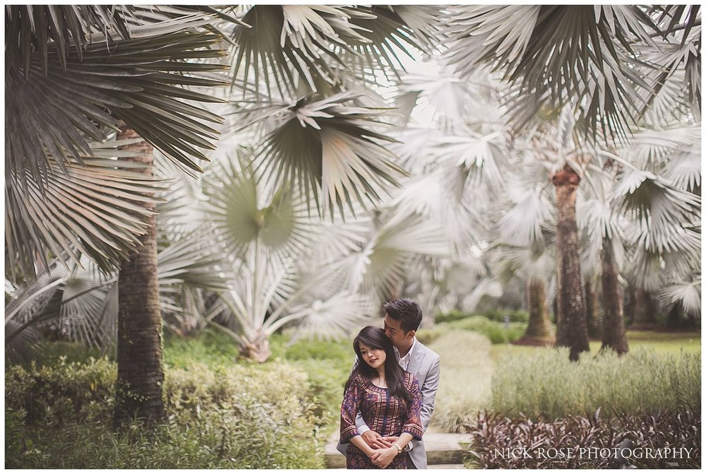 Pre wedding couple under palm trees at a Gardens by the Bay pre wedding photo shoot in Singapore