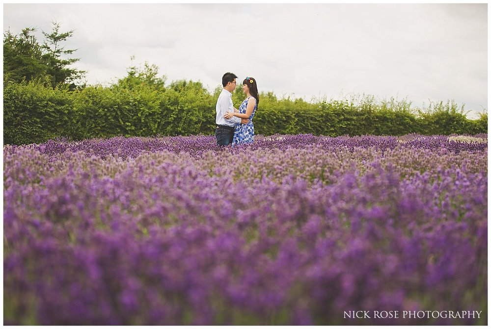 Couple standing in a lavender field during a Snowshill Lavender Farm pre wedding photography shoot