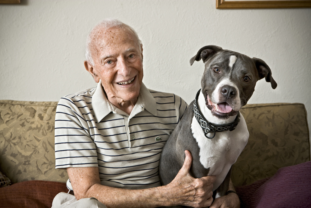 Old Man_Pitbull5892.jpg