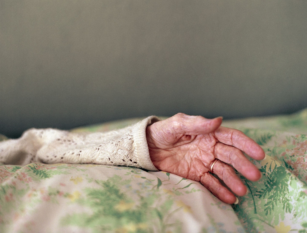 Doki's Hand, 2010