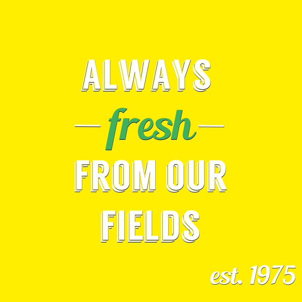 freshgraphic2.jpg