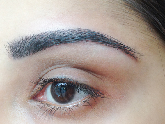 Eyebrow Hair Strokes