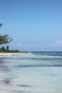 Deserted+Beach+Paradise.JPG