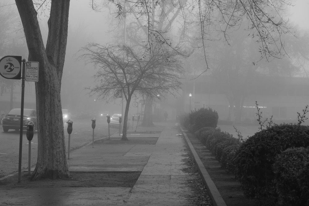 Fog Sac 2019 (8).JPG