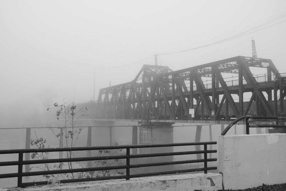 Fog Sac 2019 (23).JPG