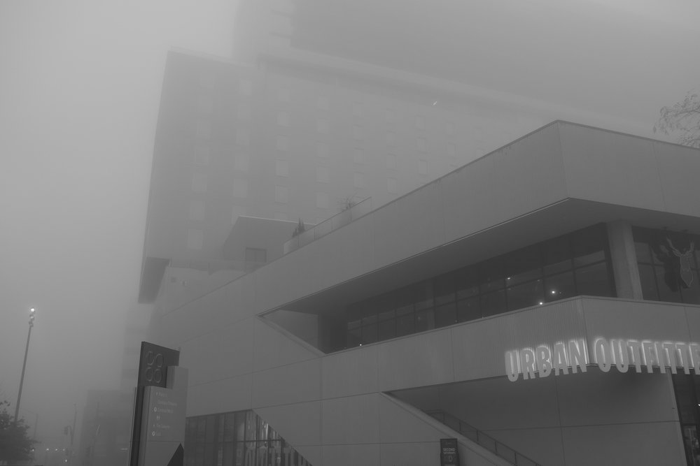 Fog Sac 2019 (6).JPG