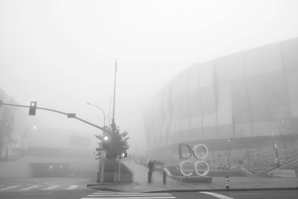 Fog Sac 2019 (4).JPG
