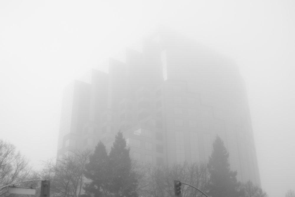 Fog Sac 2019 (14).JPG