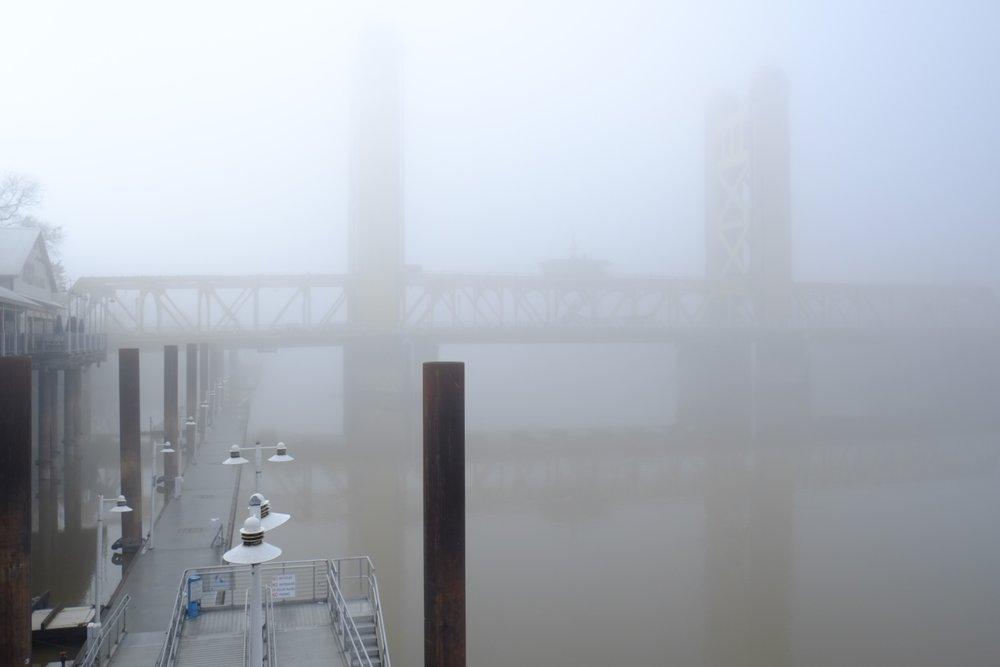 Fog Sac 2019 (19).JPG