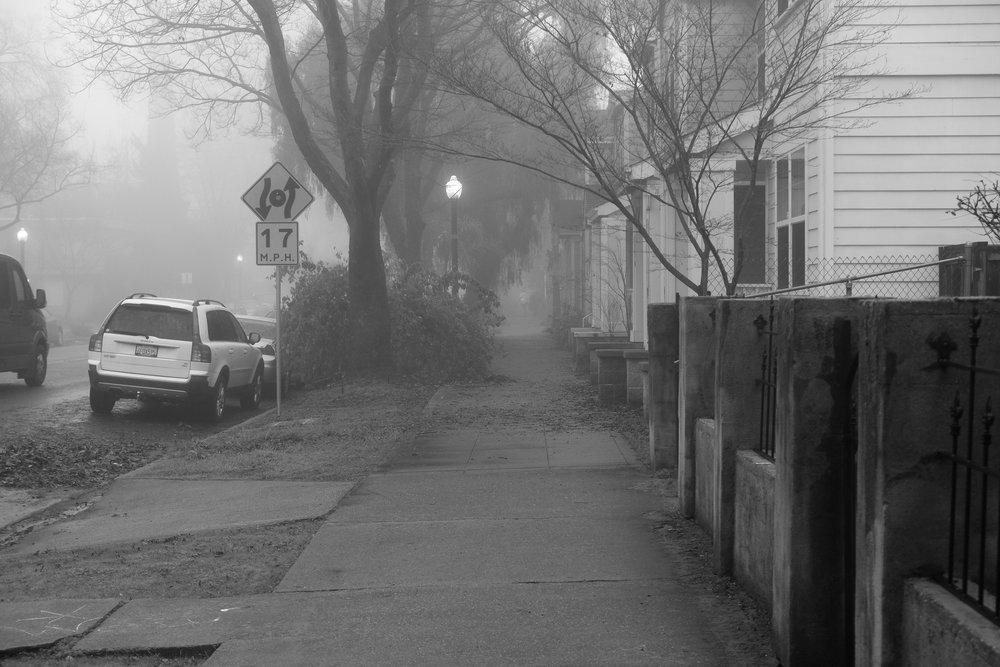 Fog Sac 2019 (9).JPG
