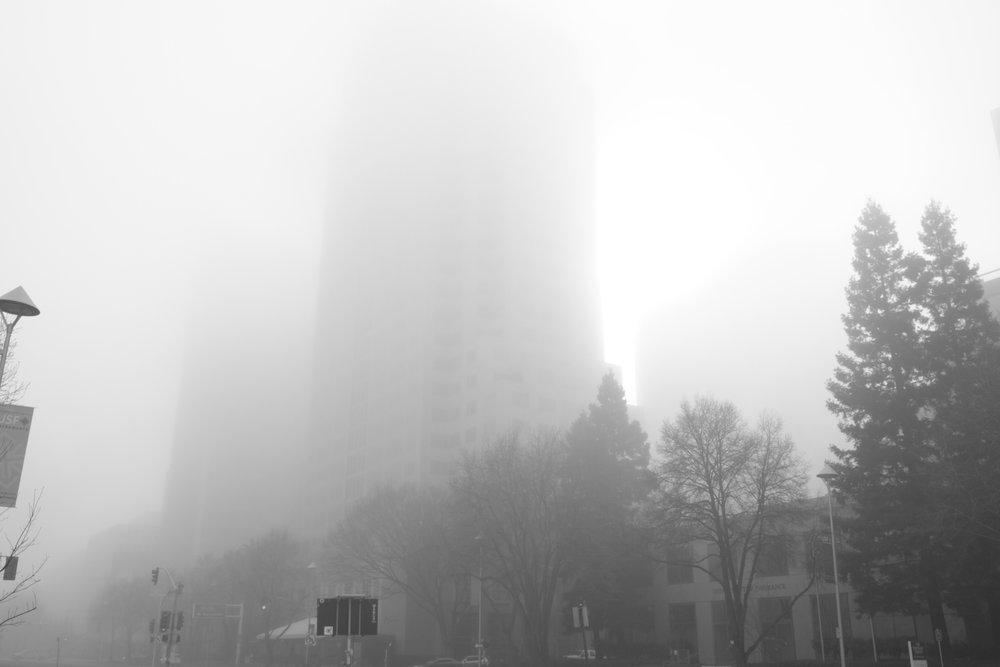Fog Sac 2019 (15).JPG