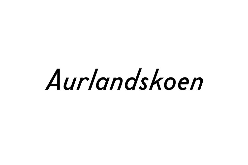 newworkstudio_aurlandskoen_logo.jpg