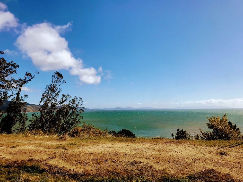 Las Bolinas: Chronic Illness Blog