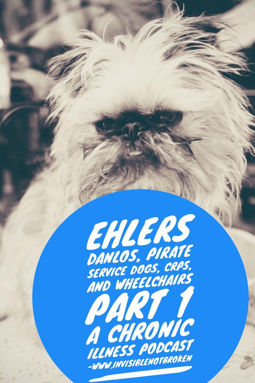 ehlers-danlos-crps-service-dog-wheelchair-chronic-illness-blog.jpg