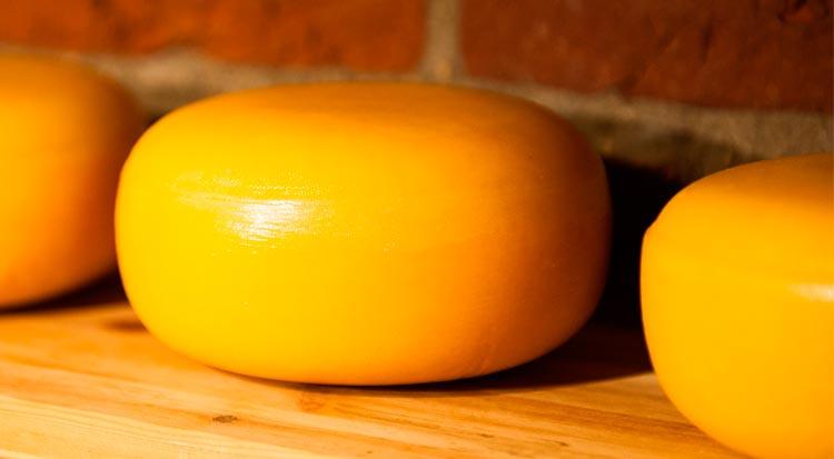 yellow_swiss_cheese