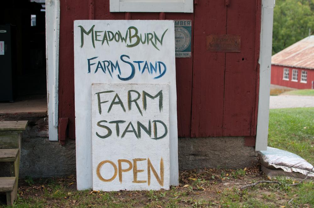 meadowburn-12.jpg