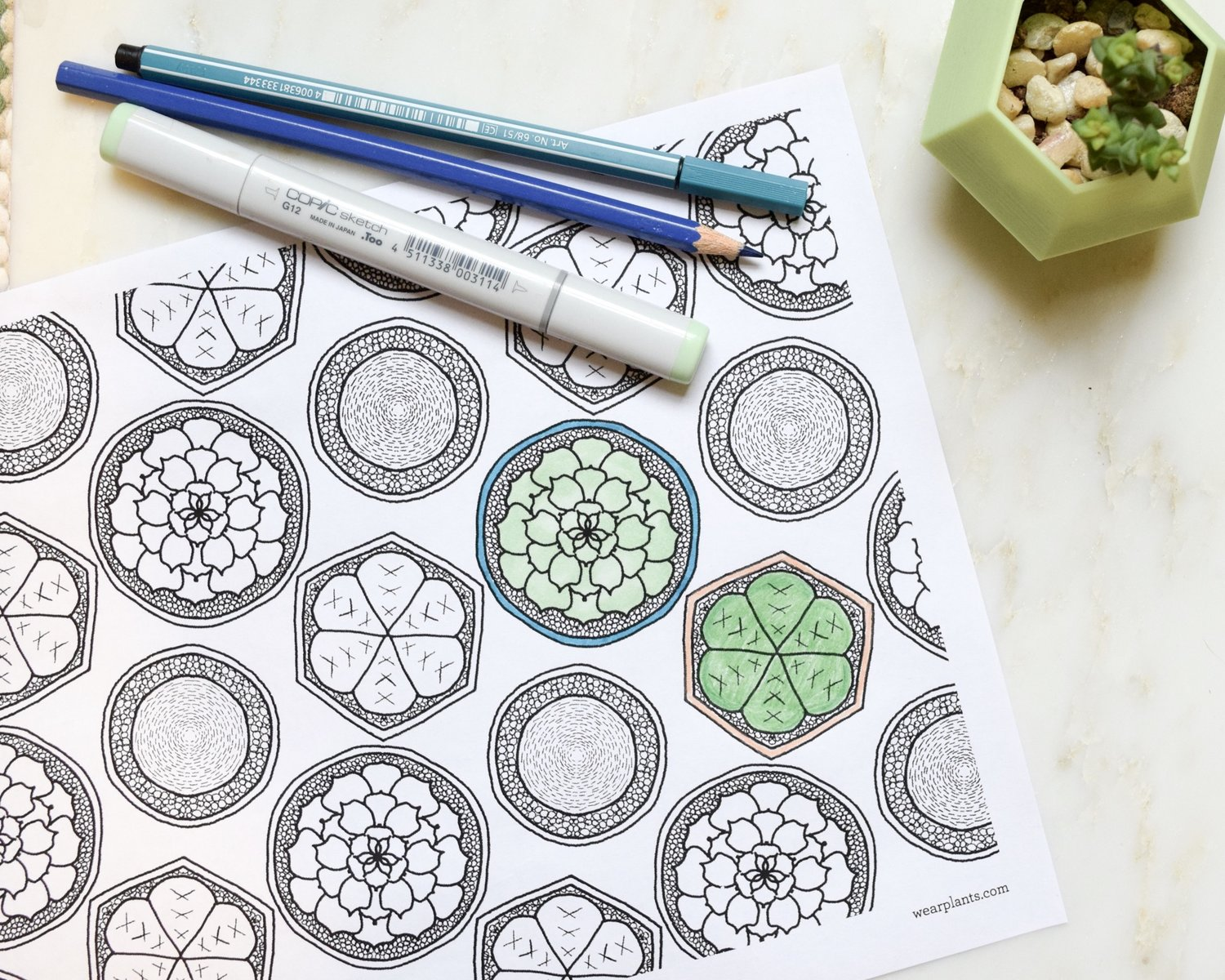 Free Download Succulent Garden Coloring Page Wearable Planter