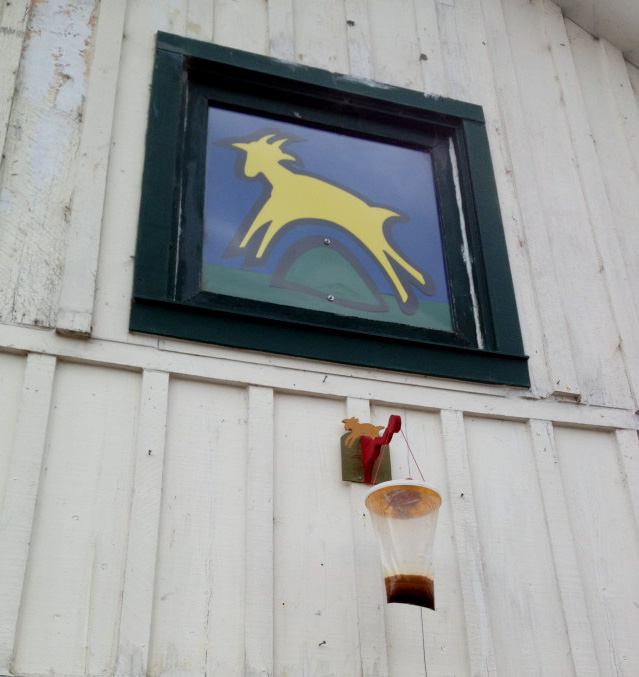 Goat Farm logo