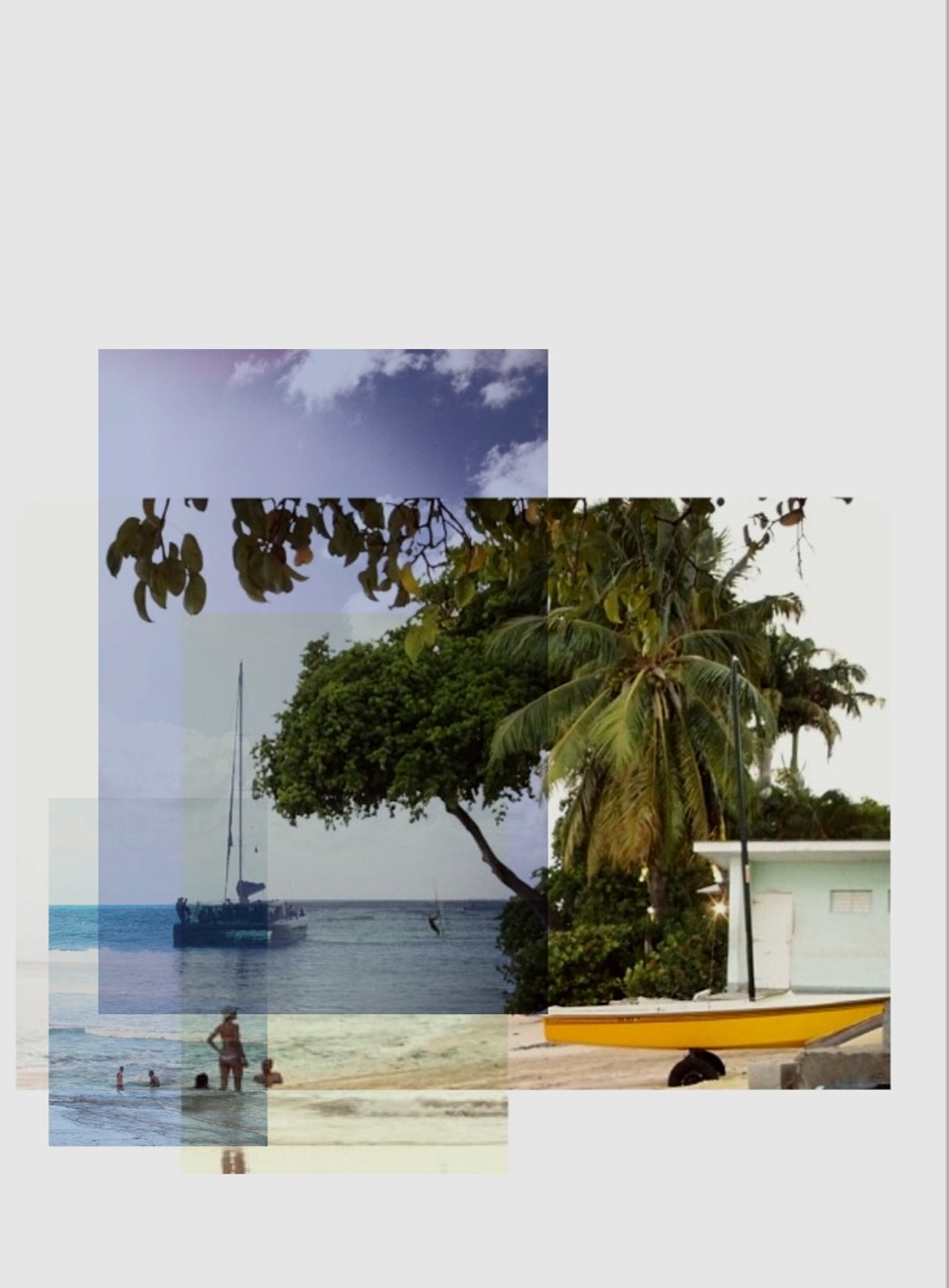 Remix_Bim_Paynes Bay.jpg