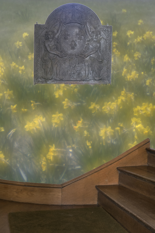 DaffodilHillNarrows.jpg