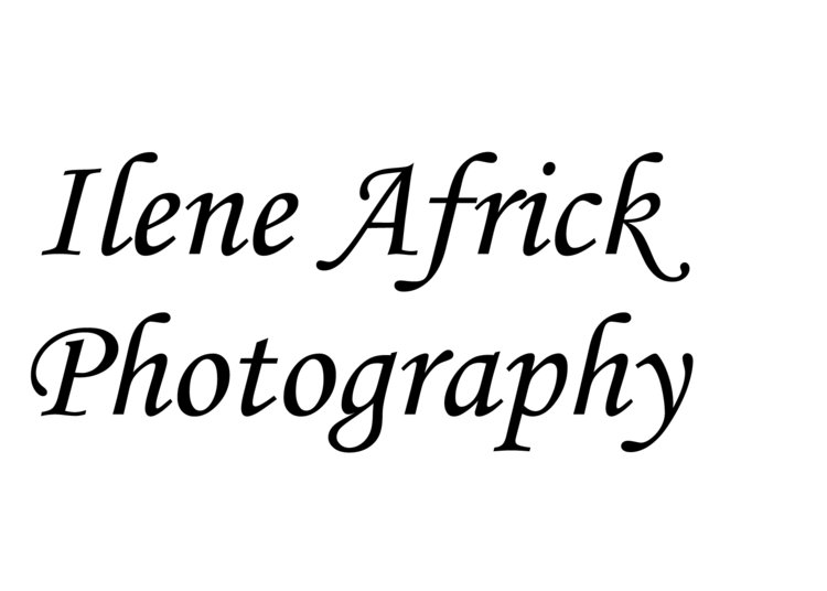 Ilene Africk Photography