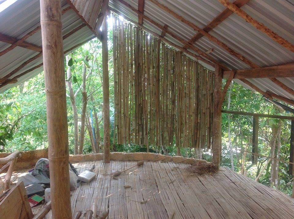 bamboo7.jpg