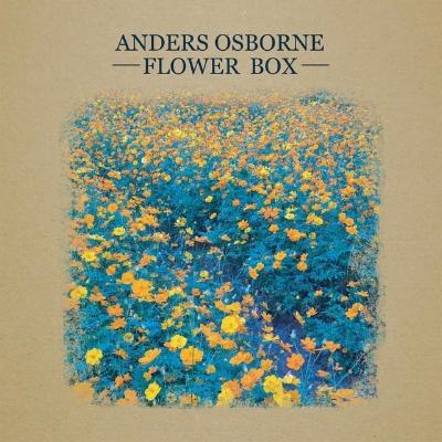 AO Flowerbox.jpg