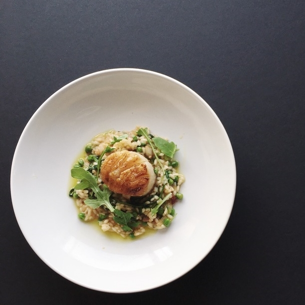 Seared Scallop with White Miso & Arugula Risotto